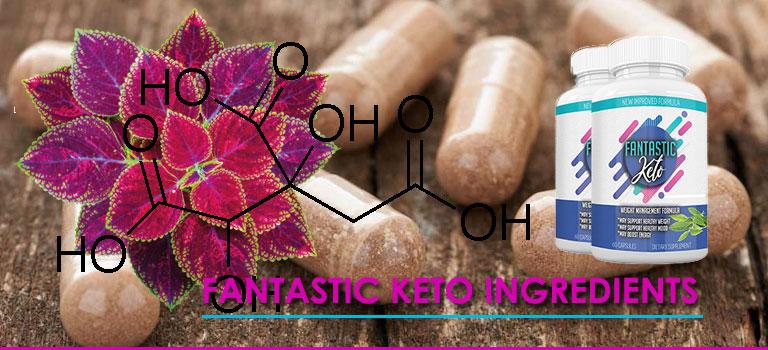 Ingredients in Fantastic keto Diet Pills
